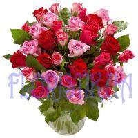Розы красно-розовые