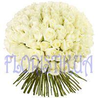 Букет из 75 голландских роз
