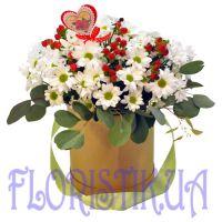 Коробка пушистых хризантем
