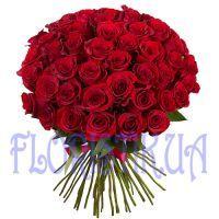 Букет 75 красных голландских роз