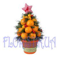 Доставка цветов жмеринка доставка цветов саратов дешево